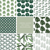 Green Leaves Patterns seamless Background, Tropical summer fabric texture, Vector illustration.