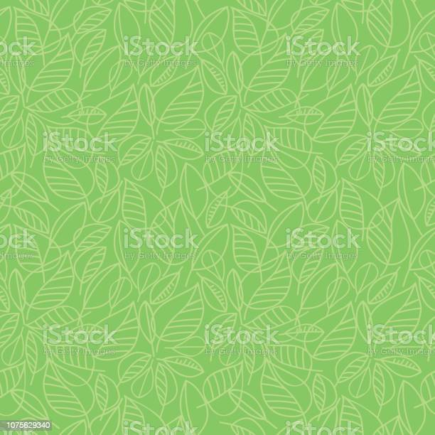Green leaves seamless pattern vector id1075629340?b=1&k=6&m=1075629340&s=612x612&h=g19x21vmjglzsgnjw ddjkxbsg0k 5iks9qj9sjsmci=