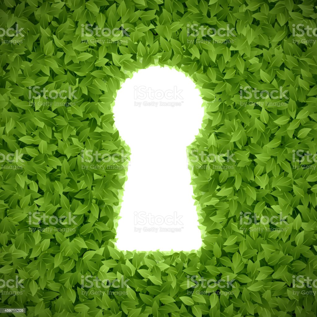 Green leaves with keyhole vector art illustration