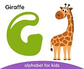 Green letter G and brown Giraffe.
