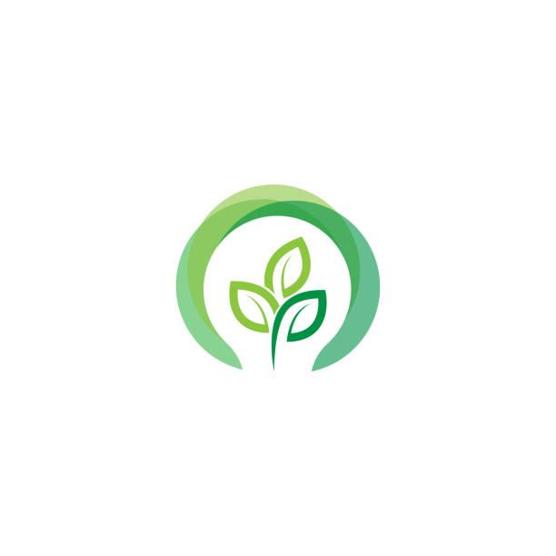 green light bulb leaf symbol logo vector.  Logo of green energy. Stylized eco logo biofuel. Renewable green energy logo - Vector green light bulb leaf symbol logo vector.  Logo of green energy. Stylized eco logo biofuel. Renewable green energy logo - Vector plant bulb stock illustrations