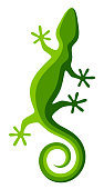 Green lizard on a white background