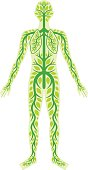 Human body with green floral elements inside