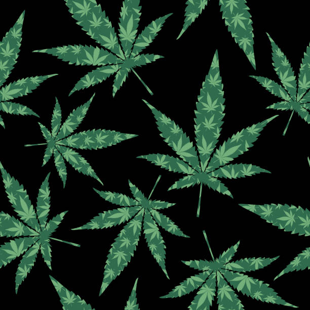 illustrazioni stock, clip art, cartoni animati e icone di tendenza di green marijuana leaves seamless pattern - antidolorifico