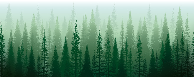 Vector Illustration of a Beautiful and Misyterious Green Forest Enveloped in a green fog. Horizontal Seamless Design.