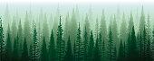 istock Green Mist Green Misterious Trees. Horizontal Seamless Design. 1329185317