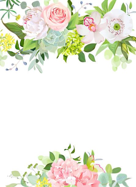 grüne mischung aus hortensie, sukkulenten, echeveria, eukalyptus und fl - kräutermischung stock-grafiken, -clipart, -cartoons und -symbole