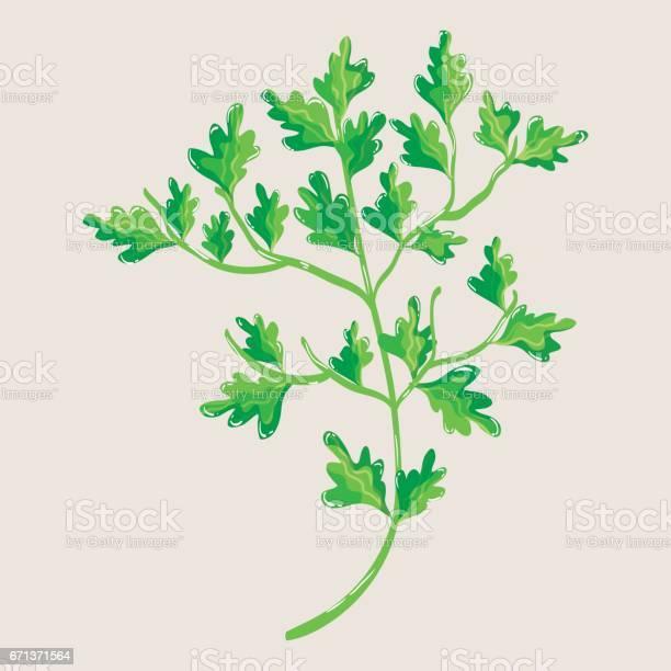 Green nice plant decoration botany vector id671371564?b=1&k=6&m=671371564&s=612x612&h=ixrwuhof 35xbuopwypdzmaomdbiabonyvbxmrpkx1e=