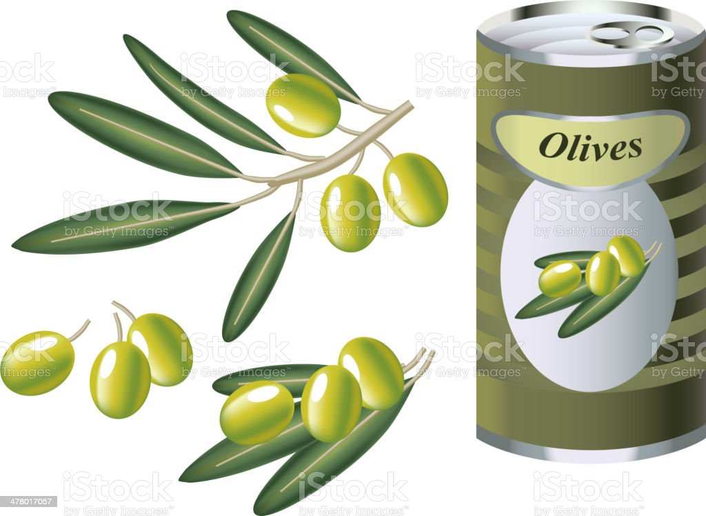 green olive branch and bank of olives vector art illustration