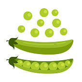istock Green open pea seed. Fresh fruits concept. Vector flat cartoon design graphic illustration icon 1072191392