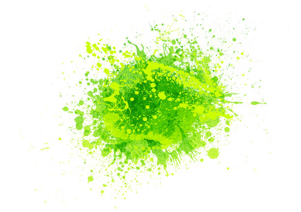 green paint splash green paint splash abstract vector background fruit backgrounds stock illustrations