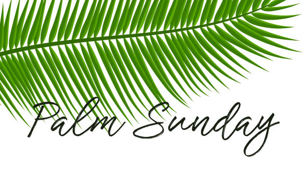 green palm leafs vector icon. vector illustration for the christian holiday. palm sunday text handwritten font. for postcards, design, - palm sunday stock illustrations, clip art, cartoons, & icons