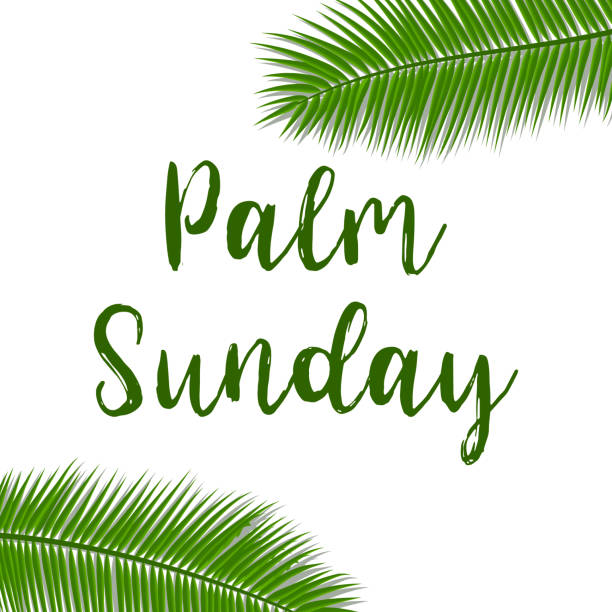 green palm leafs vector icon. vector illustration for the christian holiday. palm sunday text handwritten font. - palm sunday stock illustrations, clip art, cartoons, & icons