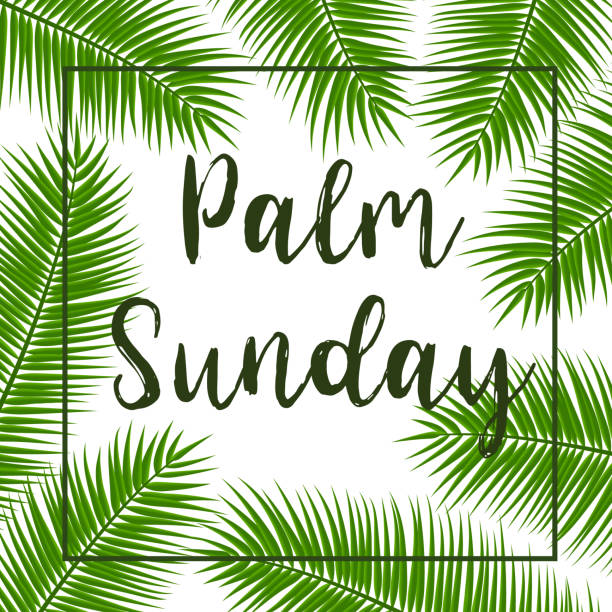 green palm leafs vector square frame. vector illustration for the christian holiday. palm sunday text handwritten font. - palm sunday stock illustrations, clip art, cartoons, & icons