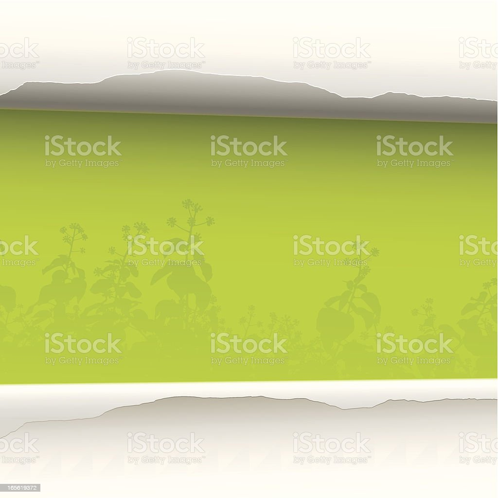 Green paper background royalty-free green paper background stock vector art & more images of backgrounds