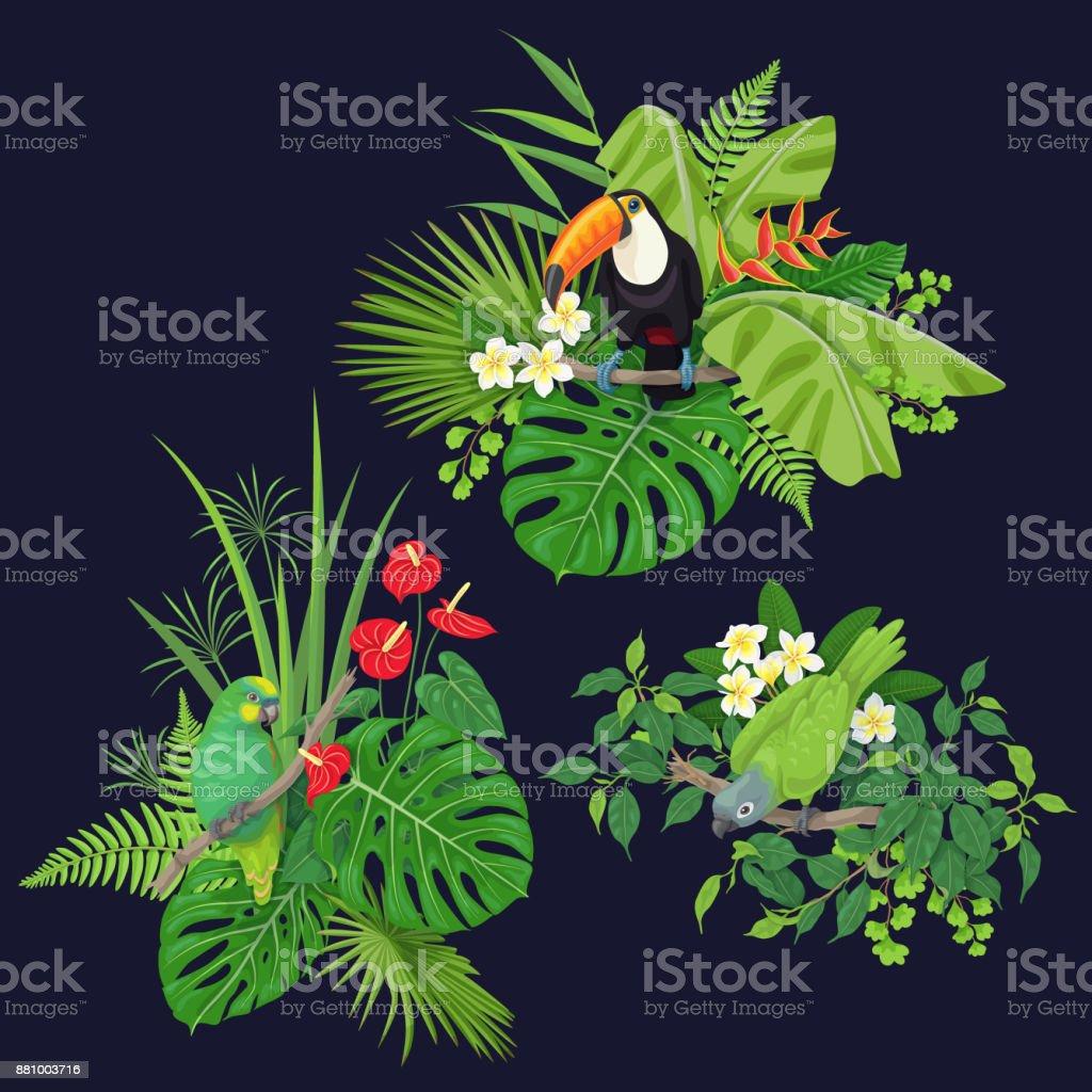 Grüner Papagei und Tukan auf Ast – Vektorgrafik