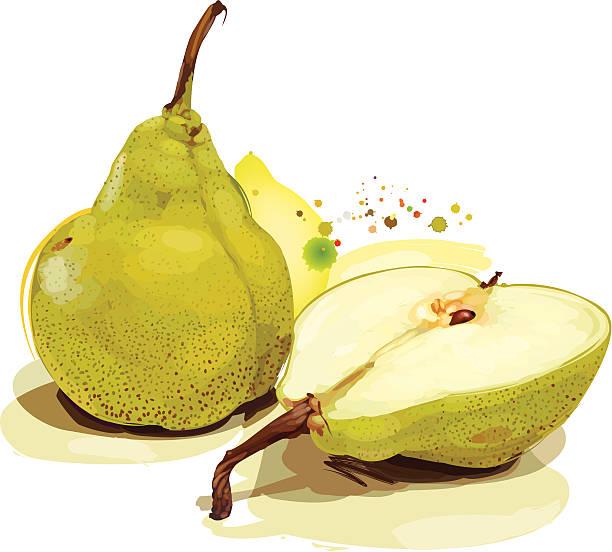 Grüne pears – Vektorgrafik