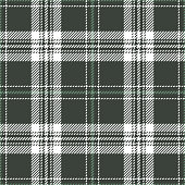 Green plaid pattern seamless vector background. Tartan check plaid for flannel shirt or other modern fashion textile design. Stripe texture.