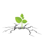 Green plant growing out from the cracked ground vector illustration