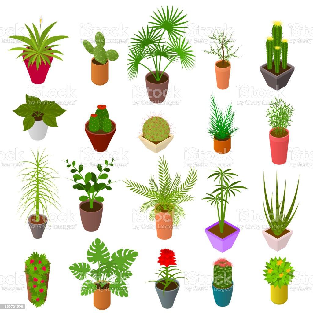 Unglaublich Grüne Pflanzen Beste Wahl Grüne F Set Icons Isometrische 3d-ansicht. Vektor