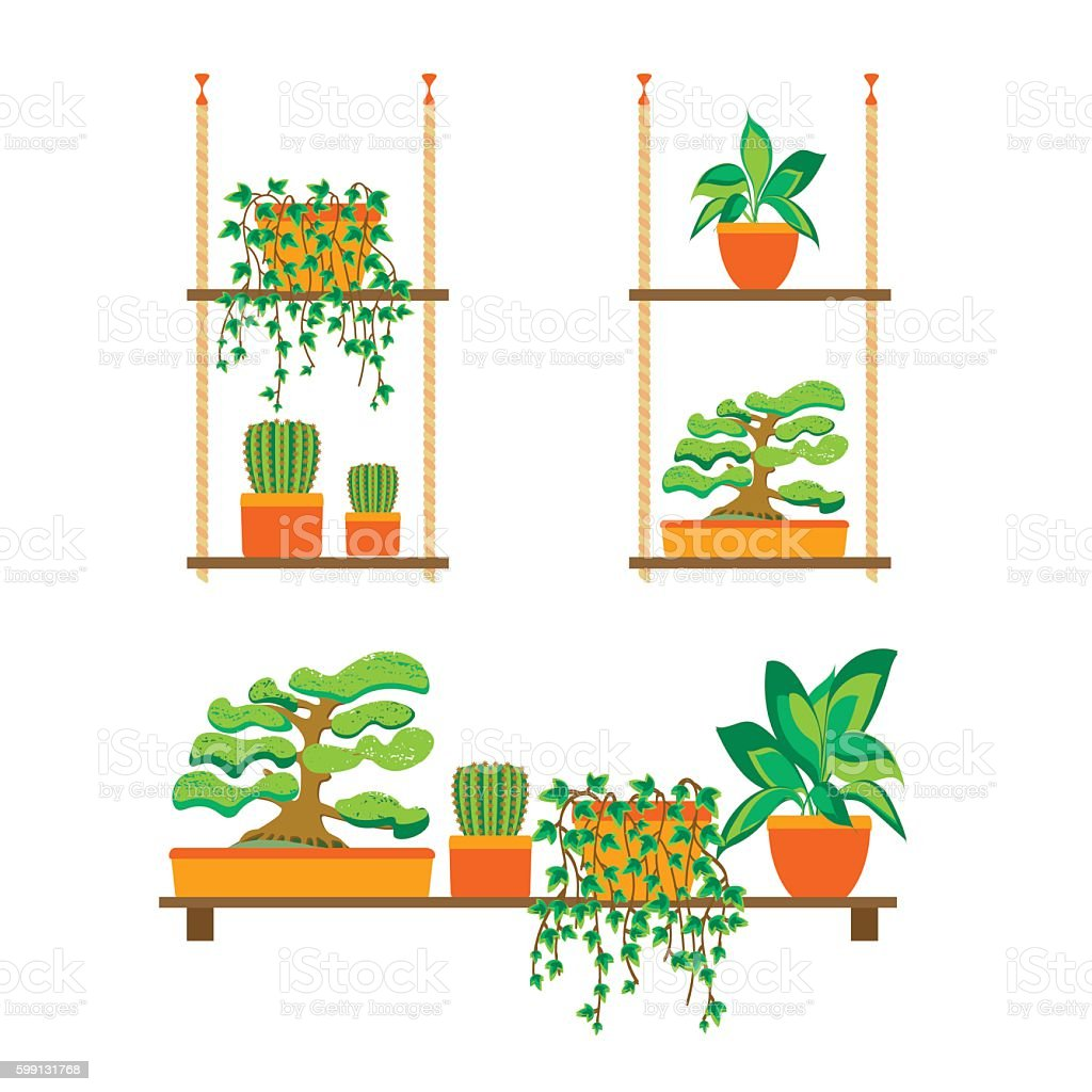 indoor home office plants royalty. Green Plants Shelves For Home Or Office. Vector Royalty-free Indoor Office Royalty -