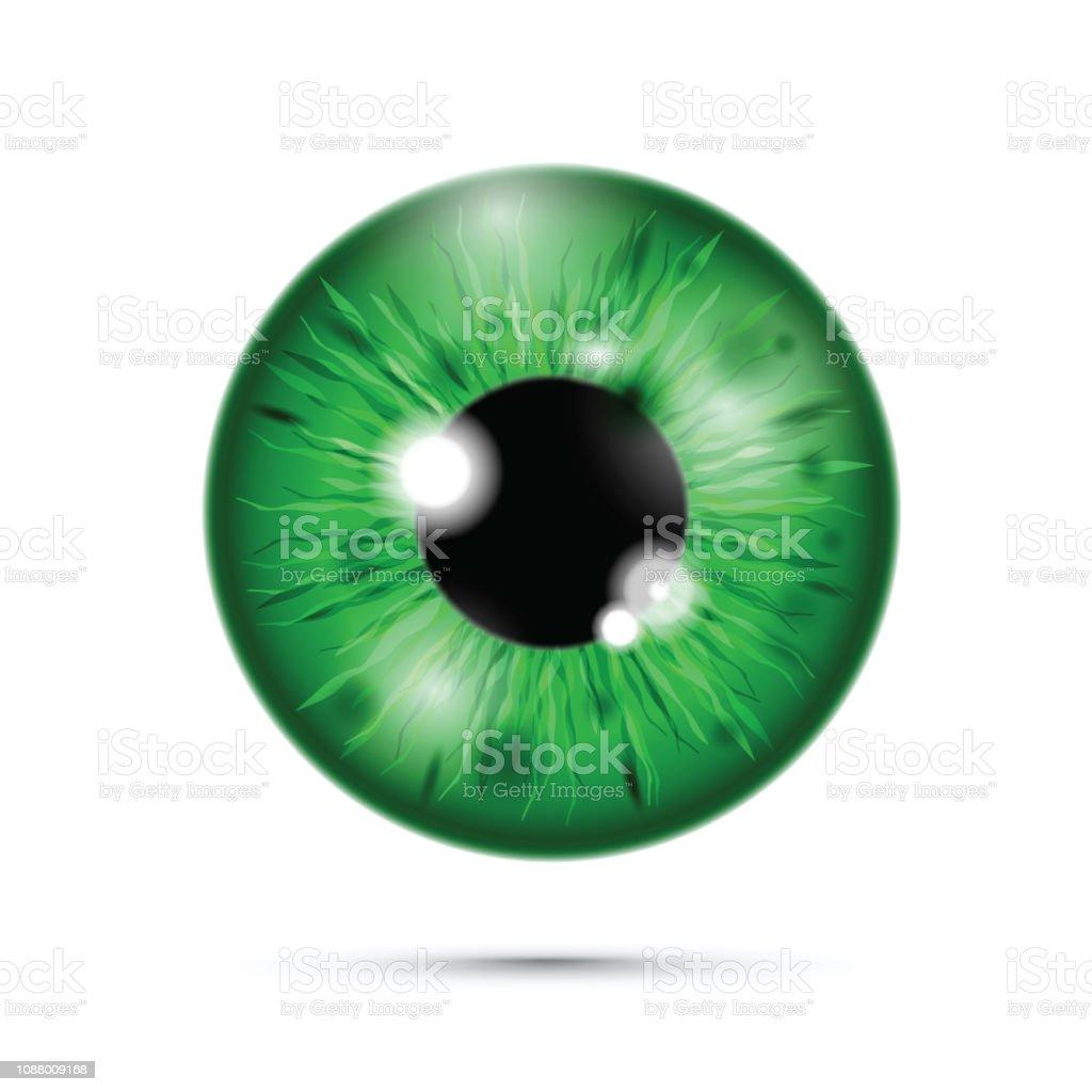 Vetores De Verde Olho Realista E Mais Imagens De Abstrato Istock
