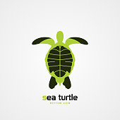 Green sea turtle. Bottom view. Modern symbol. Vector illustration