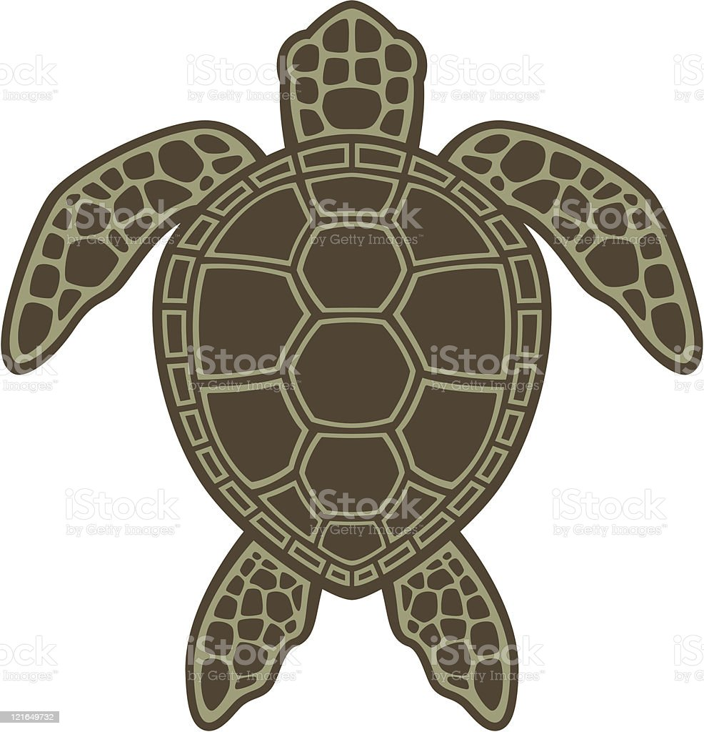 Green Sea Turtle vector art illustration