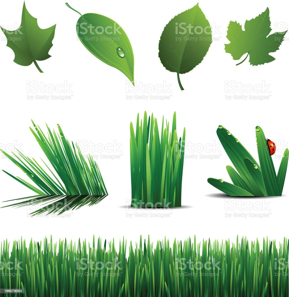 green set vector art illustration