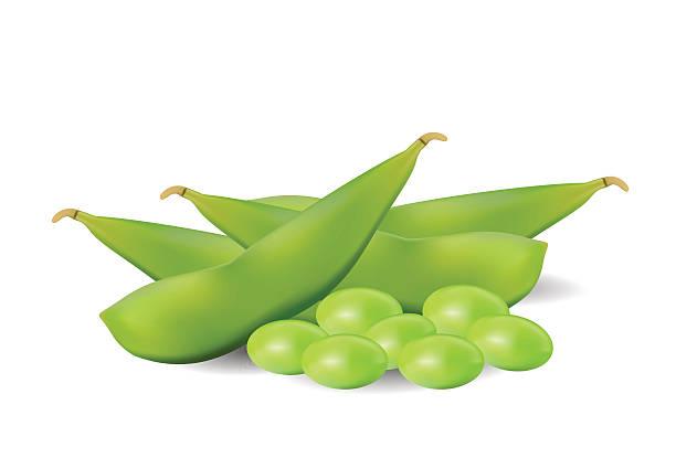 グリーン大豆豆 - 枝豆点のイラスト素材/クリップアート素材/マンガ素材/アイコン素材