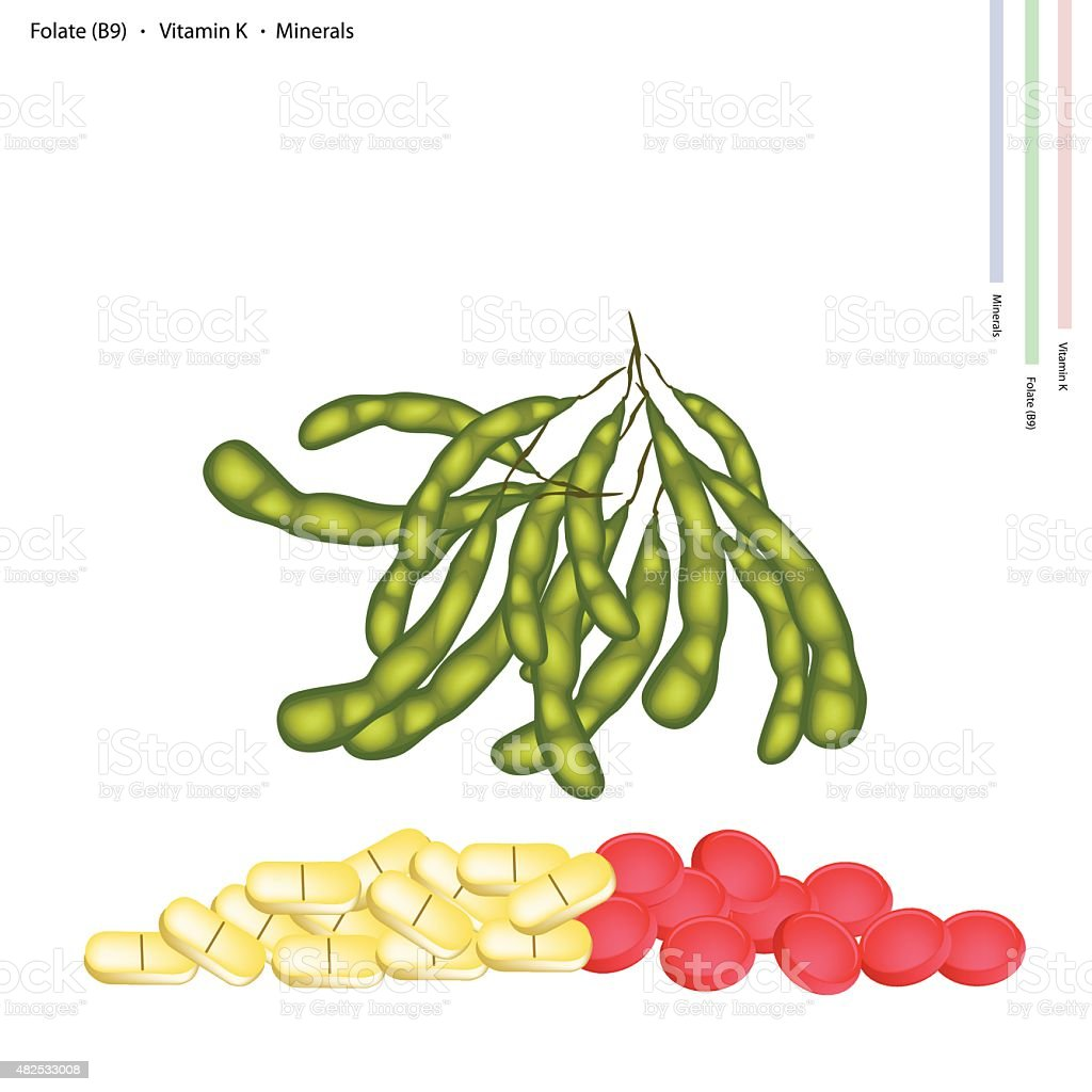 Green Soybeans with Vitamin B, K and Manganese vector art illustration