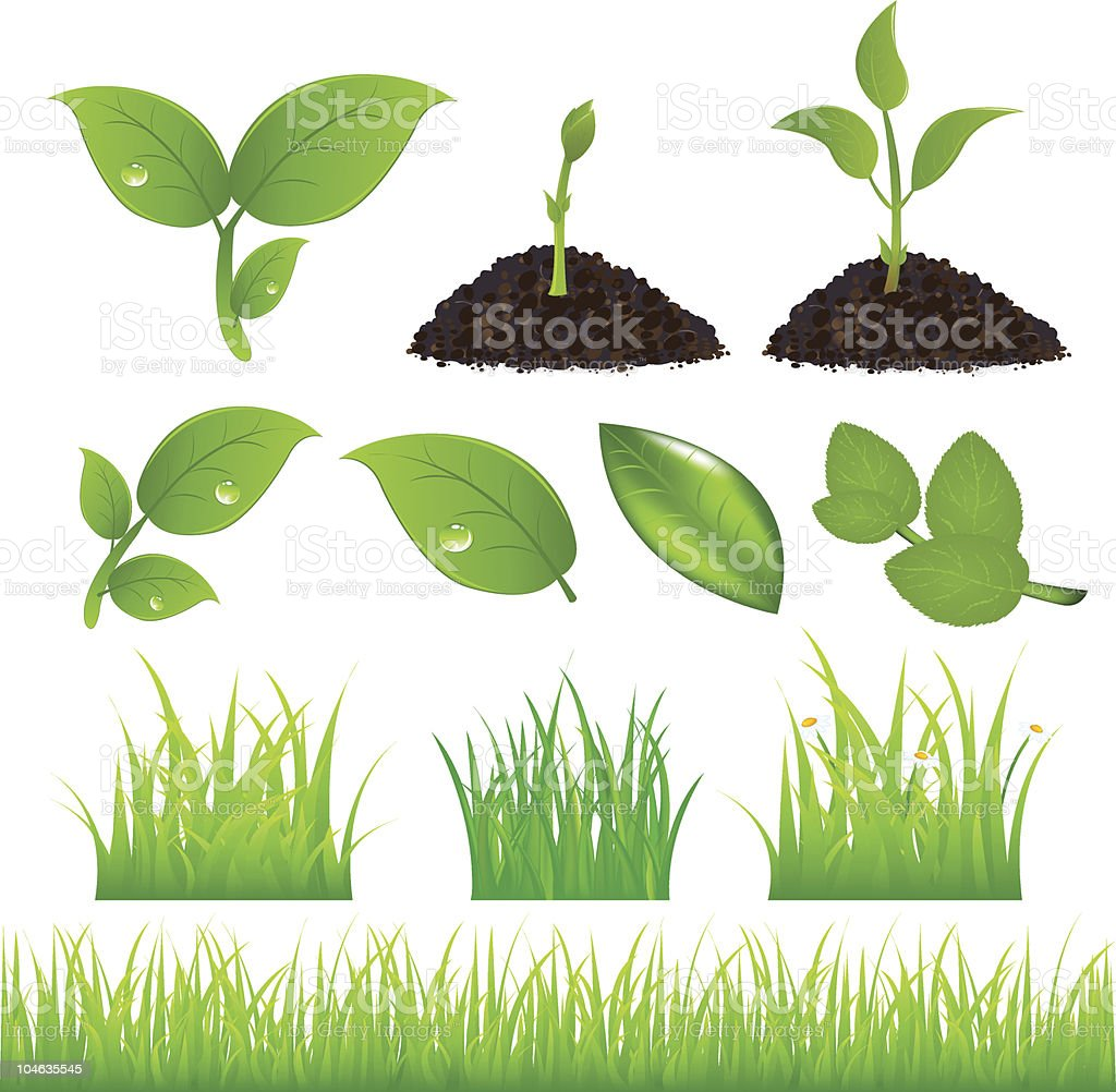 Green Spring Elements Set For Your Design vector art illustration