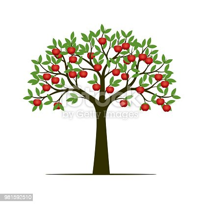 Green spring tree and red apple. Vector Illustration.