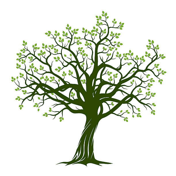 Royalty Free Tree Clip Art, Vector Images & Illustrations ...