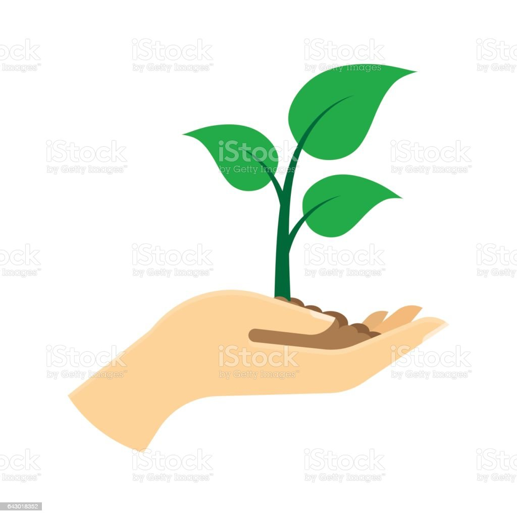Green sprout in hand. vector art illustration