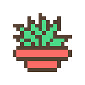 istock Green succulent (aloe, agave) in clay flower pot, 16x16 pixel art icon isolated on white background. Retro 80s-90s old school 8 bit slot machine/video game graphics. Houseplant logo. Office plant. 1147096867