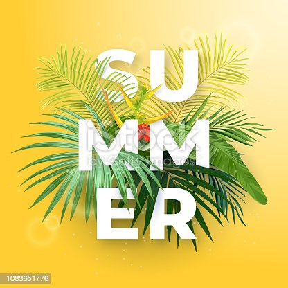 Green summer tropical background with exotic palm leaves and hibiscus flowers. Vector floral background.