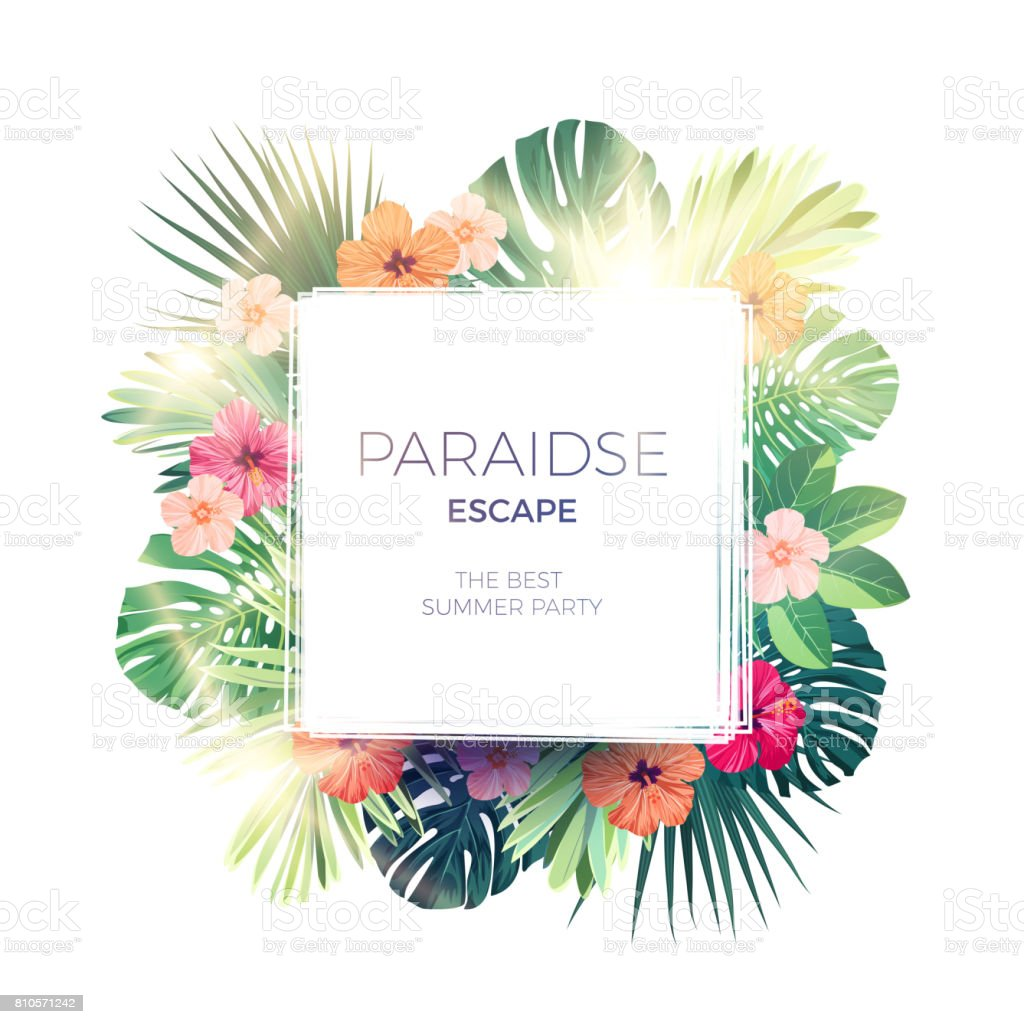 Green summer tropical background with exotic palm leaves and hibiscus flowers. Vector floral background royalty-free green summer tropical background with exotic palm leaves and hibiscus flowers vector floral background stock illustration - download image now