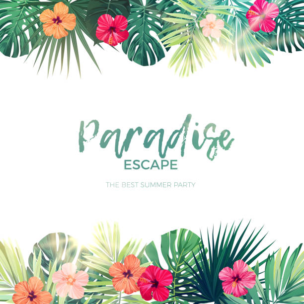 Green summer tropical background with exotic palm leaves and hibiscus flowers. Vector floral background Green summer tropical background with exotic palm leaves and hibiscus flowers. Floral background, vector illustration. hawaiian culture stock illustrations