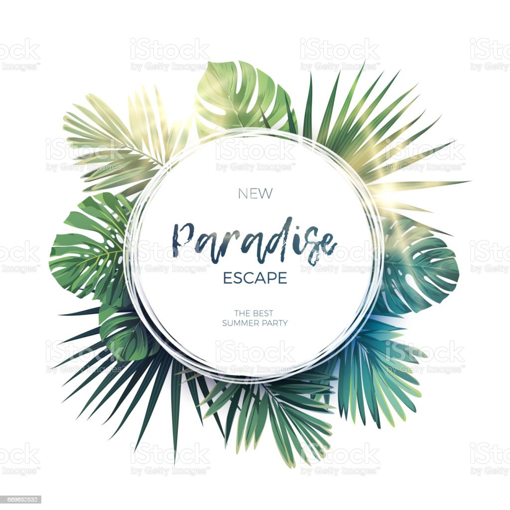 Green summer tropical background with exotic palm leaves and plants. Vector floral background