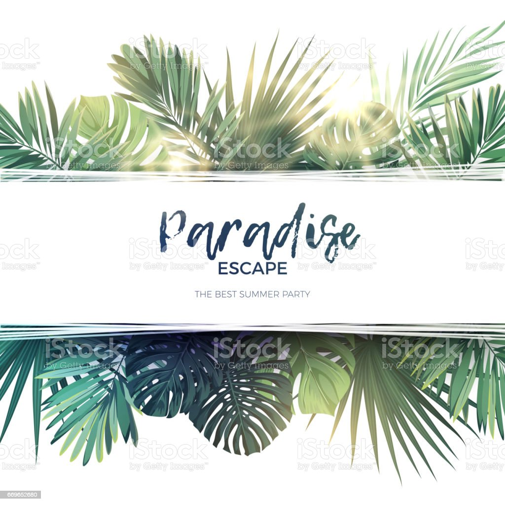 Green summer tropical background with exotic palm leaves and plants. Vector floral background royalty-free green summer tropical background with exotic palm leaves and plants vector floral background stock illustration - download image now