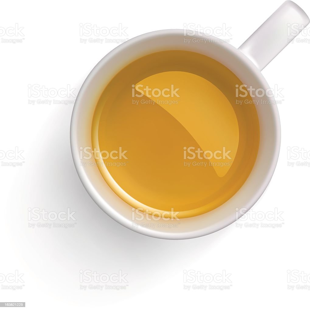 Green tea cup on white background vector art illustration