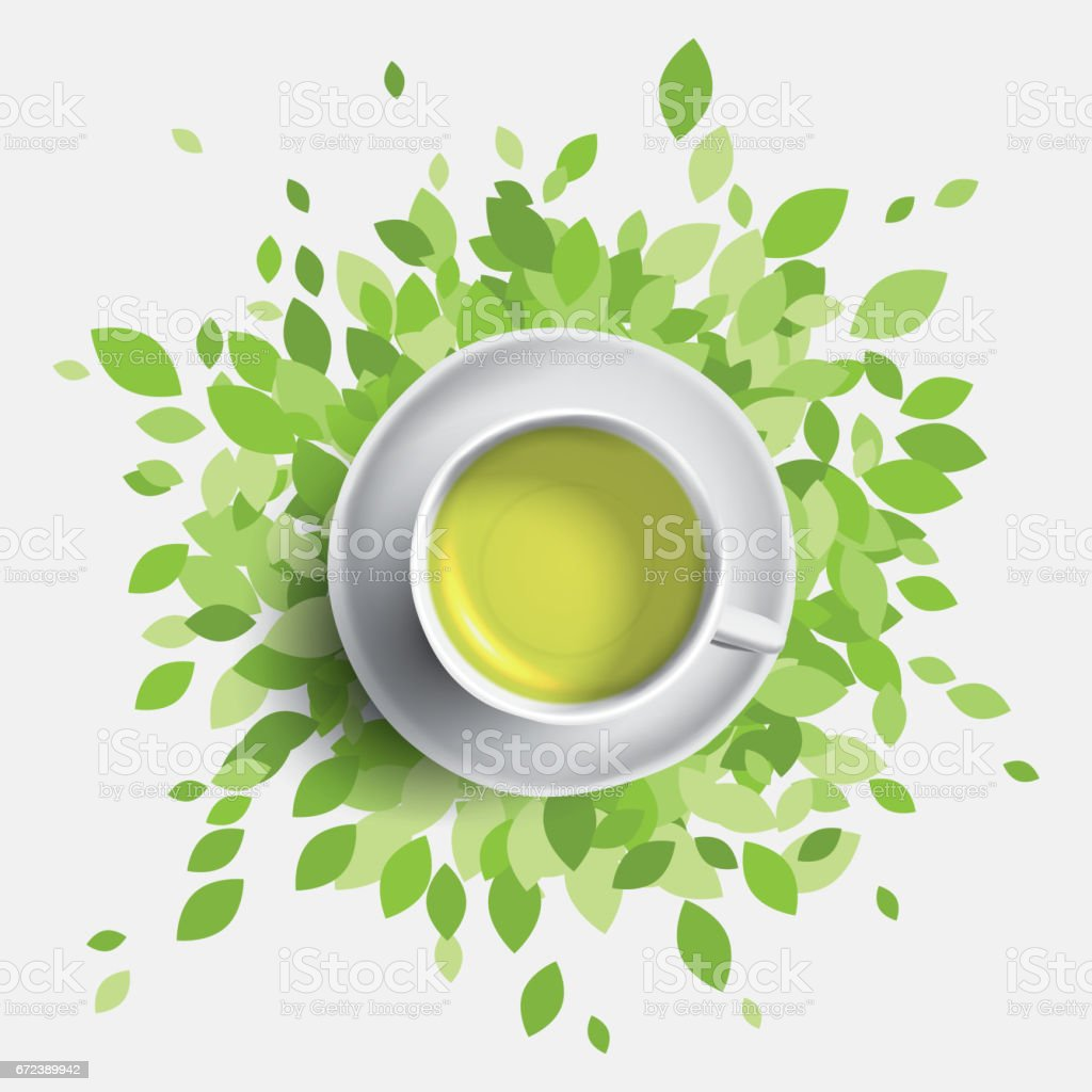 Green tea cup vector illustration. Green leaves with mug of tea. Health concept. vector art illustration