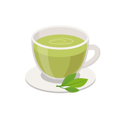 Green Tea in Cup and green leaves Vector illustration in flat design isolated on white background.
