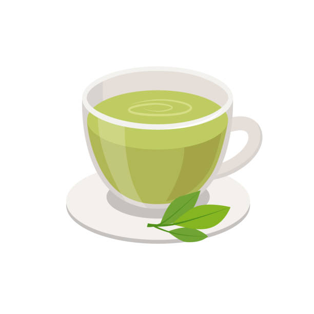 Green Tea in Cup and green leaves Vector illustration in flat design isolated on white background. Green Tea in Cup and green leaves Vector illustration in flat design isolated on white background greentea stock illustrations
