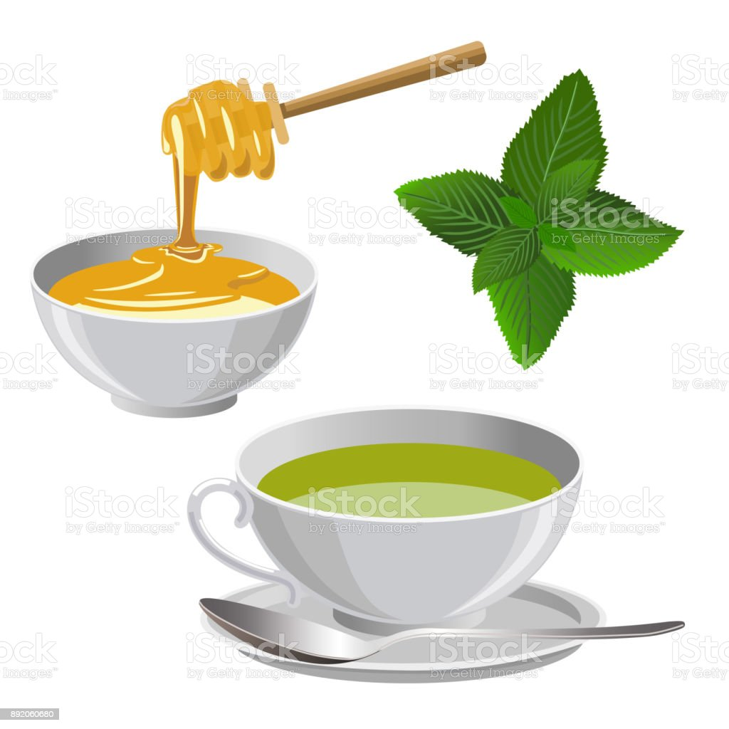 Green tea with honey vector art illustration