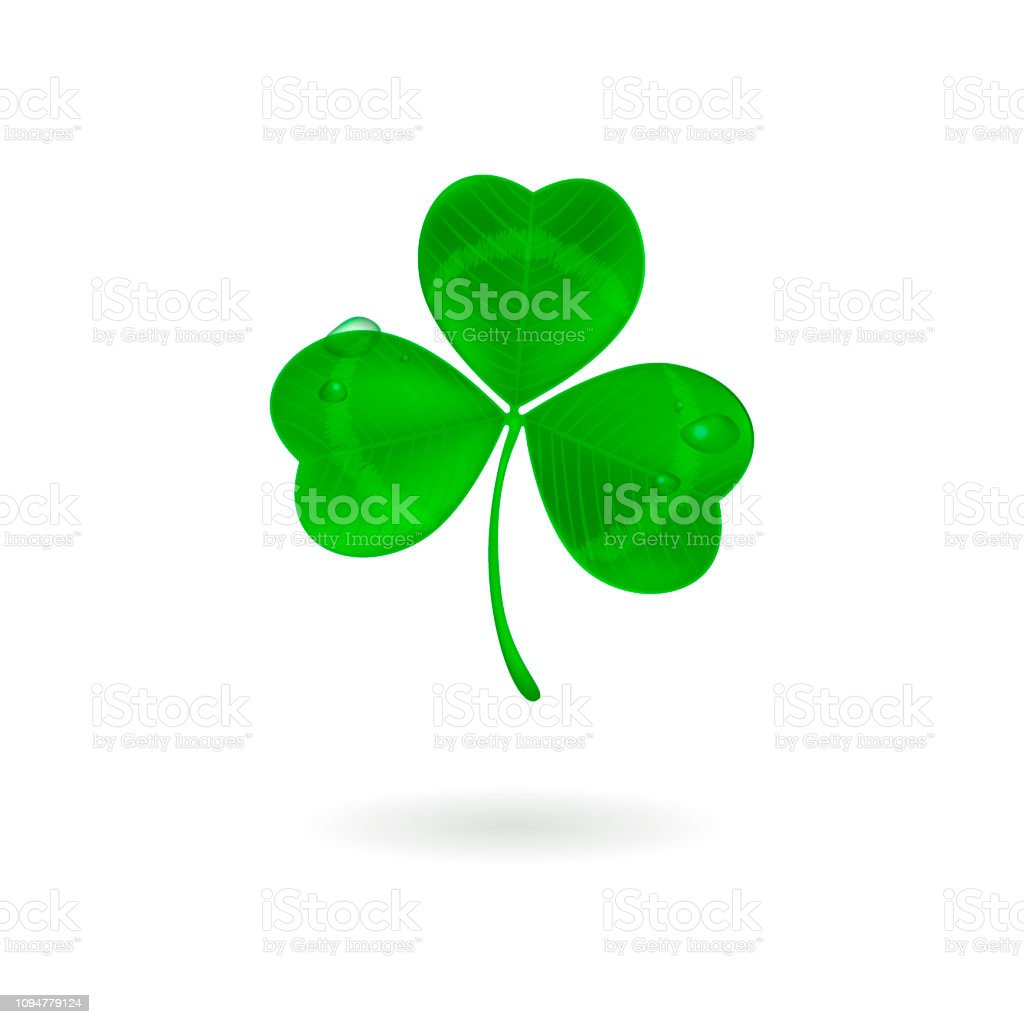 Green Three Leaf Clover With Dew Drops Isolated On White Stock Illustration Download Image Now Istock