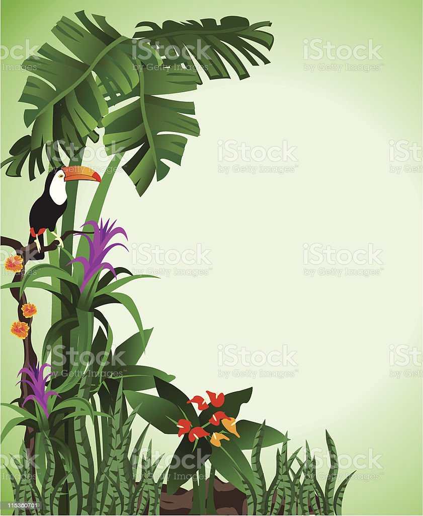 Green Toucan Background vector art illustration