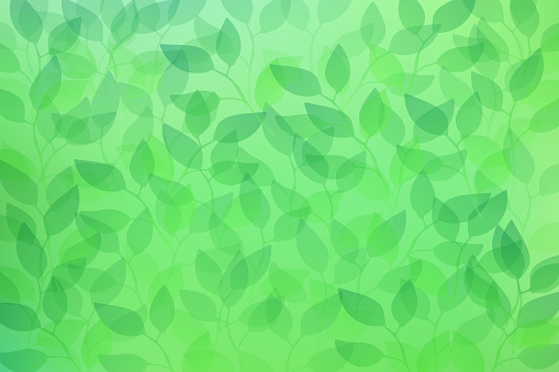 Green transparent leaves seamless pattern background
