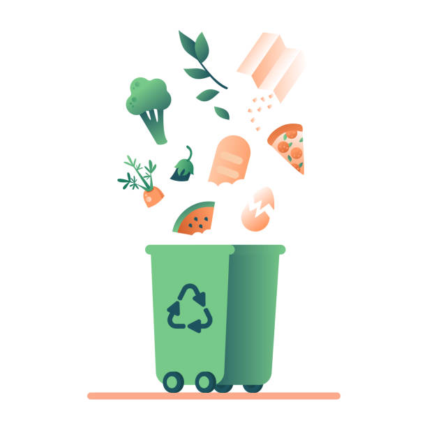 Green trash can and falling organic waste Green trash can and falling organic waste (vegetables, paper, leaves, food) for composting. Waste recycling management concept for bio,ecology,environment protection. Vector illustration leftovers stock illustrations